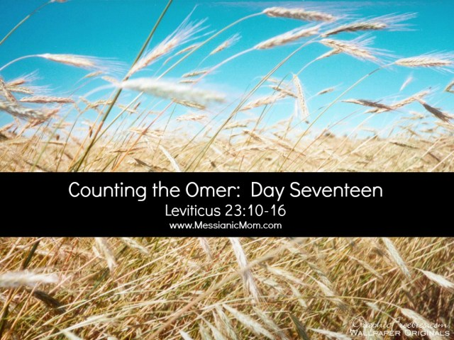 Day Seventeen Omer Count