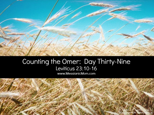 Day Thirty Nine Omer Count