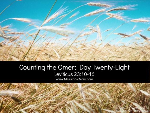 Day Twenty Eight Omer Count