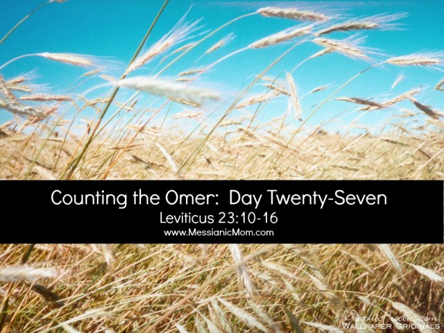 Day Twenty Seven Omer Count