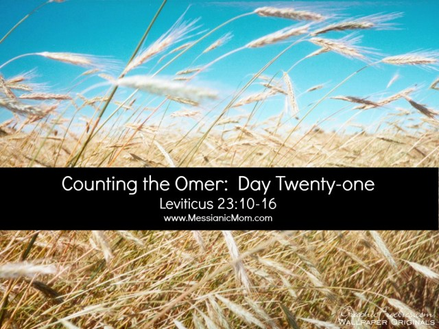 Omer Count Day