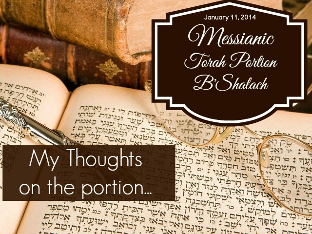 Torah Portion B'Shalach Commentary