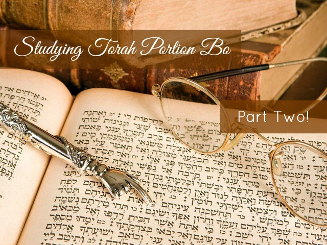 Studying Torah Portion Bo Part Two