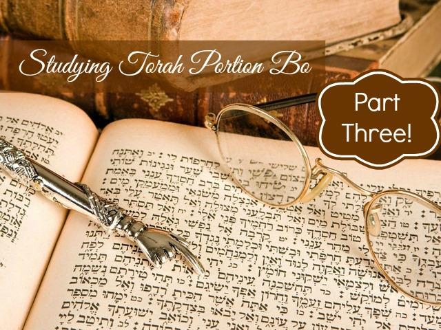 Studying Torah Portion Bo Part Three