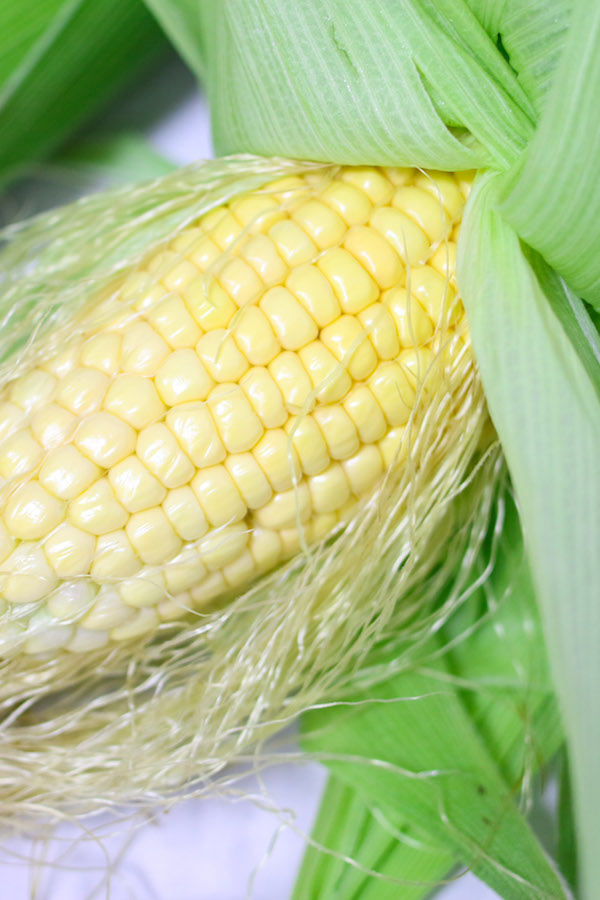 How long to boil corn on a cob