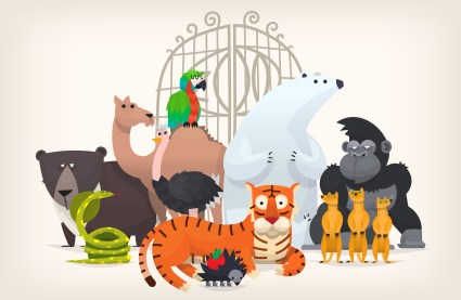 Family Time: There Were Animals at the Zoo?