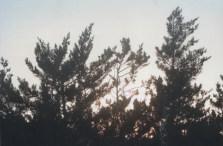 lightbeyond