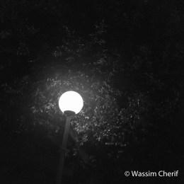 midnytlamp