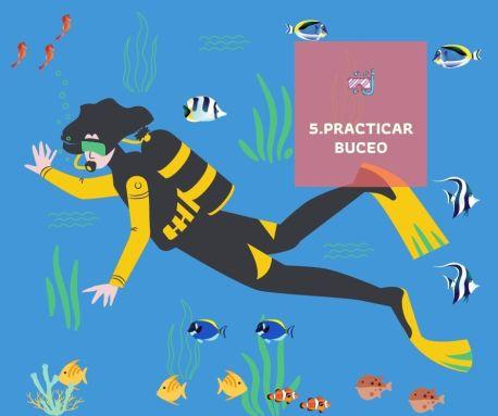 Actividad acuática - Buceo