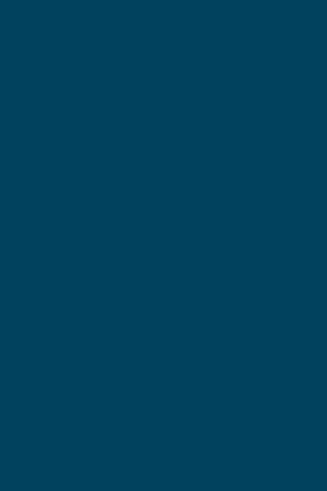 Bleu Canard Cmjn Gamboahinestrosa