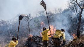 940x529_fotos-publicas-queimadas-mt_incendio_foto_mayke_toscano_gcom-mt_02092015_015