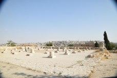 amman-citadelle-al-qalaa-2