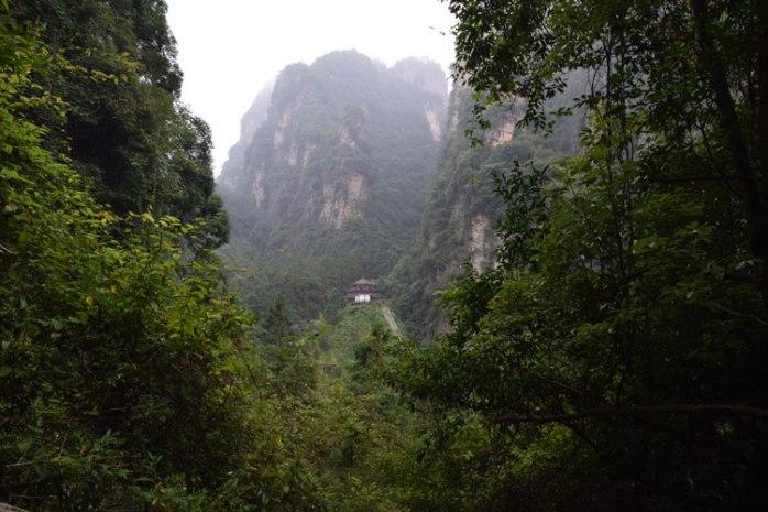 baofeng-vue