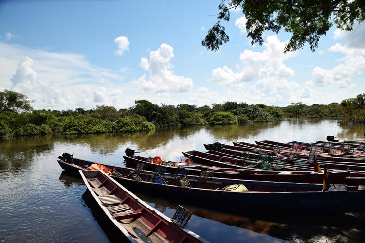 Parc national Madidi