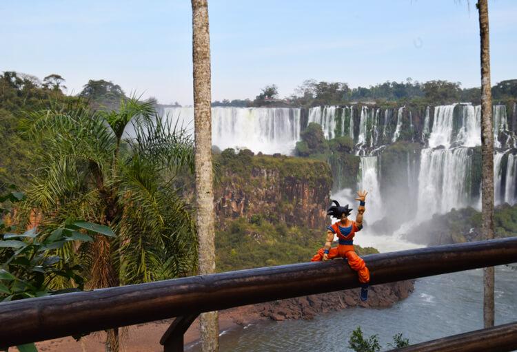Son Goku Iguazu