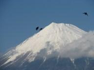 Fuji - Mont Fuji