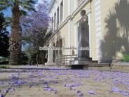 Péloponnèse - Napflio - Au hasard des rues