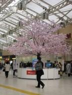 Tokyo - Asakusa - Gare