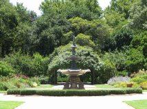 Adelaide - Jardin botanique
