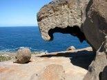 Kangaroo island - Flinders chase - National Park - Remarkable rocks