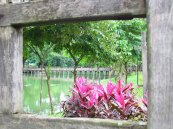 Yangon - Lac 'Kan Daw Gyi'