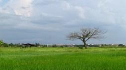 Lampang - Au hasard des chemins