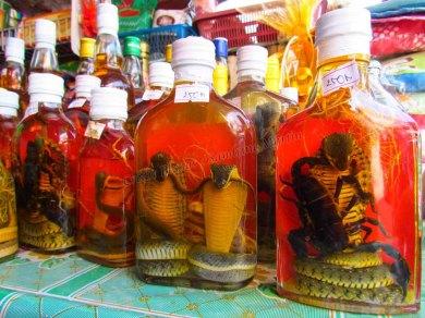 Huay Xai - Au hasard des rues - Echoppe, alcool avec macération de serpents et scoprions