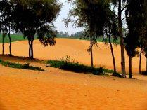 Mui Ne - Dunes de sable rouge
