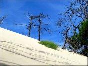 Gironde - Dune du Pilat