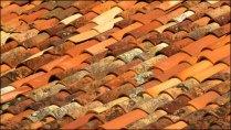 Landes - Sabres - Marquèze, sur les toits