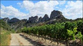Vaucluse - Les Dentelles de Montmirail - Les vignes