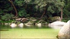 Cap Tribulation - Mossman Gorge