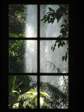 Darwin - Jardin botanique - Entrevue