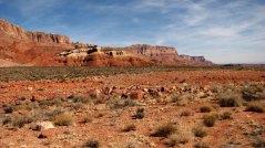 Arizona - Sur la route entre Marble Canyon et Zion
