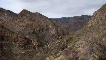 Arizona - Tucson - Sabino Canyon, vue
