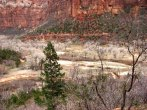 Utah - Parc national Zion - Emerald Pool Trail Middle