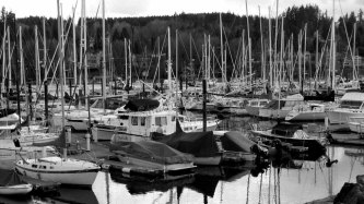 Washington - Seattle - Bainbridge - Port
