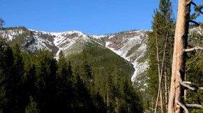 Wyoming - Yellowstone - Sur la route entre Madison et Norris