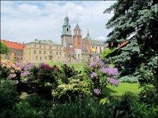 Cracovie - Le château 'Wawel', cathédrale