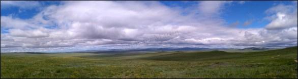 Sur la route entre lac Ogii et Oulan Bator