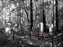Yekaterinbourg - Cimetière Shirokorechenskoye Kladbishche, Mikhail Kuchin, dit cimetière de la mafia
