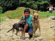 Panauti - Au hasard des chemins, petit garçon et ses chiens
