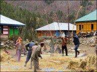 Himalaya - Vallée de Kinnaur - Chitkul - Au hasard des rues, les locaux