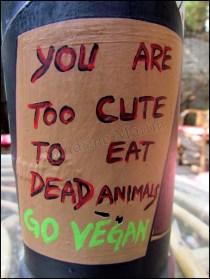 Varanasi - Restaurant, vegan