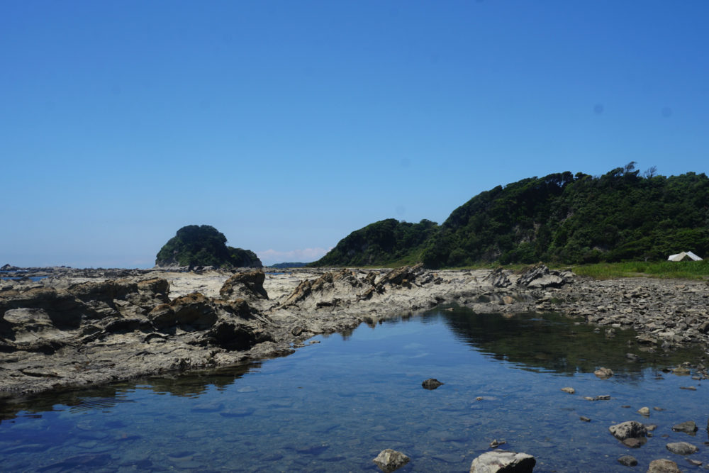 透明度の高い海水には生物もたくさん