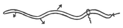 Fórmula del orgasmo d