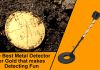 Best Metal Detector for Gold