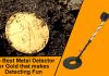 Best Metal Detector for Gold