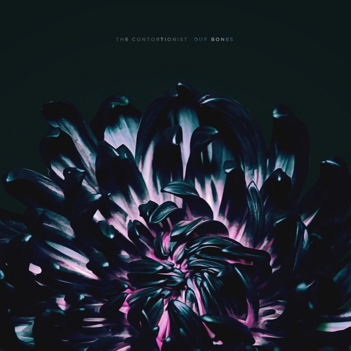 The Contortionist Our Bones EP Review