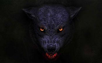 Orange Goblin - The Wolf Bites Back Album Cover